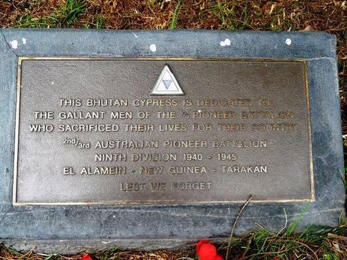 2/3rd Pioneer Battalion : 21-September-2011
