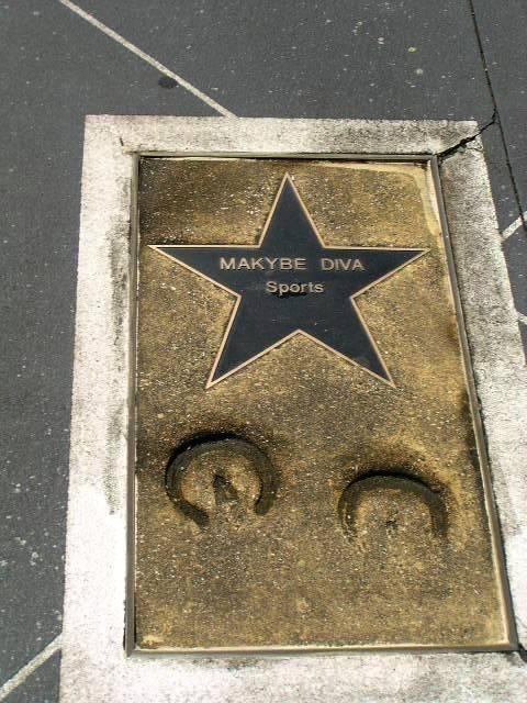Maykybe Diva: 2013