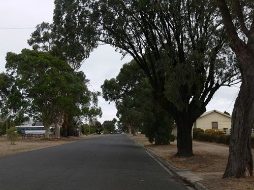 Avenue of Honour : 06-April-2013