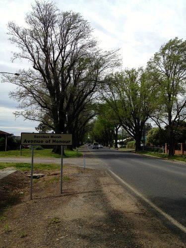 Bacchus Marsh Avenue of Honour : October 2013