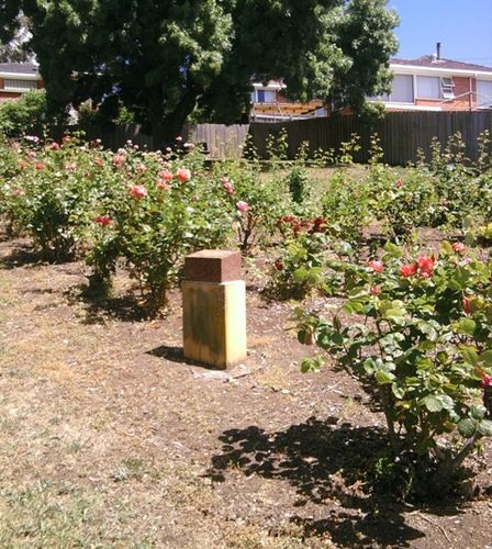 Bahat Community Peace and World Unity Rose Garden : 07-January-2013