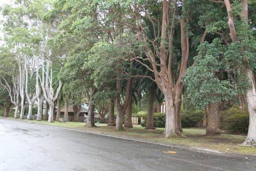Berry Memorial Avenue : 14-06-2014