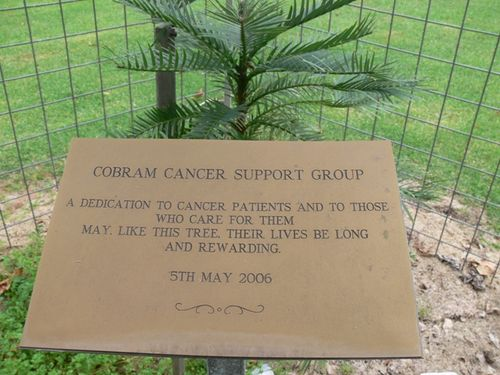 Cancer Patients and Carers : 12-May-2013