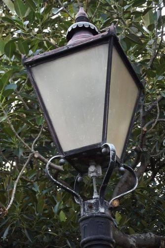 Cook Centenary Gaslamp : 19-02-2014