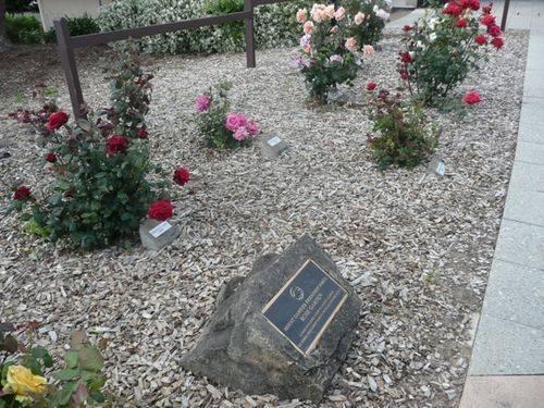 Friendship Force Rose Garden : 02-December-2012