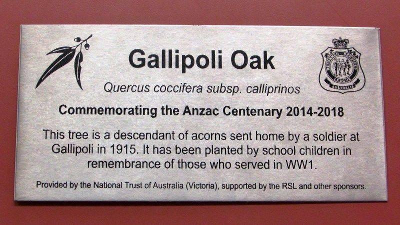 Gallipoli Oak Plaque: 28-February-2017