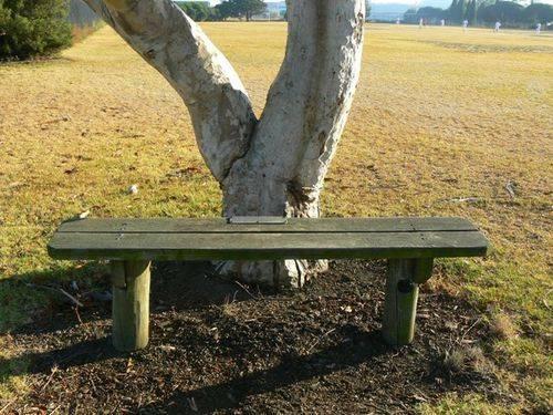Geelong North Vietnam War Memorial Seat
