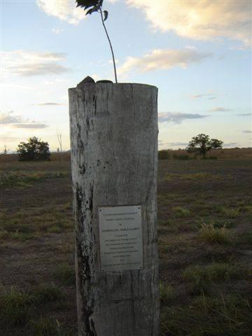 Indigenous Trainees Tree : 03-04-2006
