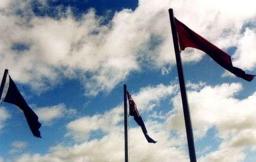 Line of Lode Memorial Flags : 2006