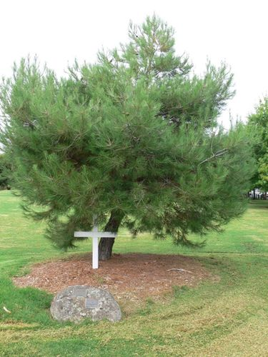Lone Pine Memorial : 16-March-2012