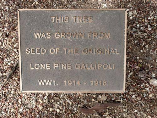Lone Pine Memorial : 26-November-2012