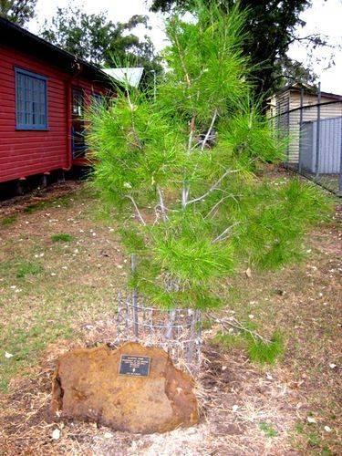 Lone Pine Memorial : 19-05-2009