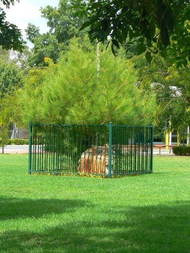 Lone Pine Memorial : 27-March-2006