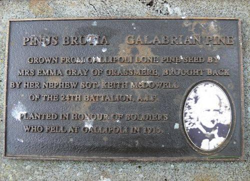 Lone Pine Memorial : 14-June-2011