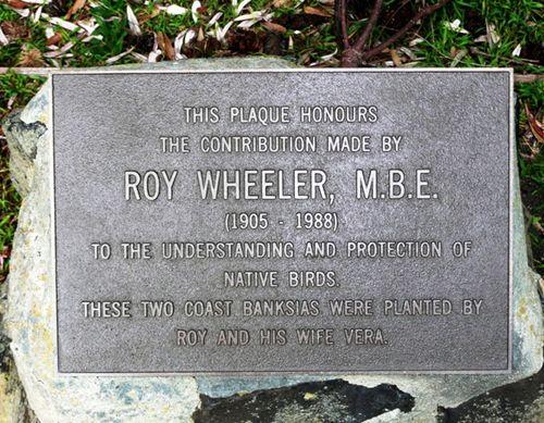 Roy Wheeler : 08-June-2012