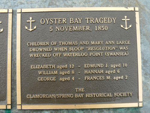 Oyster Bay Tragedy : 2007