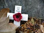 60th Anniversary WW2 Lest We Forget