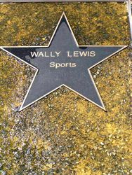Wally Lewis : 2013