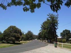 Avenue of Honour 3 : 02-January-2015