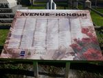 Avenue of Honour : 04-July-2011