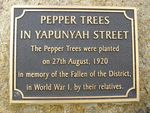 Pepper Trees Plaque : 27-03-2014