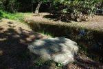 Captain Cooks Landing Site Stream