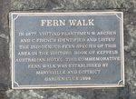 Fern Walk : 14-June-2013