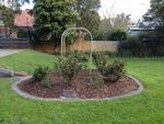 Geelong West  Bahá'í Community Rose Garden : 10-09-2013