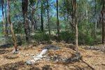 Grays Point Bushfire : 16-February-2013