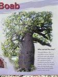 Gregorys Tree Reserve Information Plaque 7