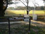 Hall Memorial Grove