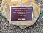 Hovell Tree Inscription : December 2013