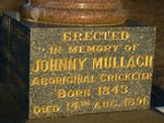 Johnny Mullagh