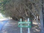 Lara Avenue of Honour
