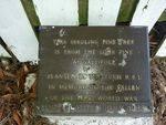 Gallipoli Pine Plaque : March 2014