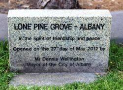 Lone Pine Grove