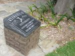 Vietnam Stone : 26-02-2014