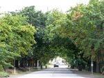 Narre Warren North Honour Avenue : 10-April-2013