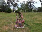 Sarah Cafferkey Memorial Plaque : October 2013