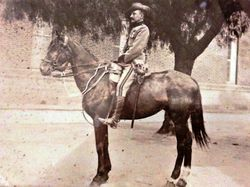 Lieutenant Colonel Charles Reade on his horse Jenny (Benita Hutchinson)