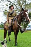 Light Horse Representation : 23-06-2013